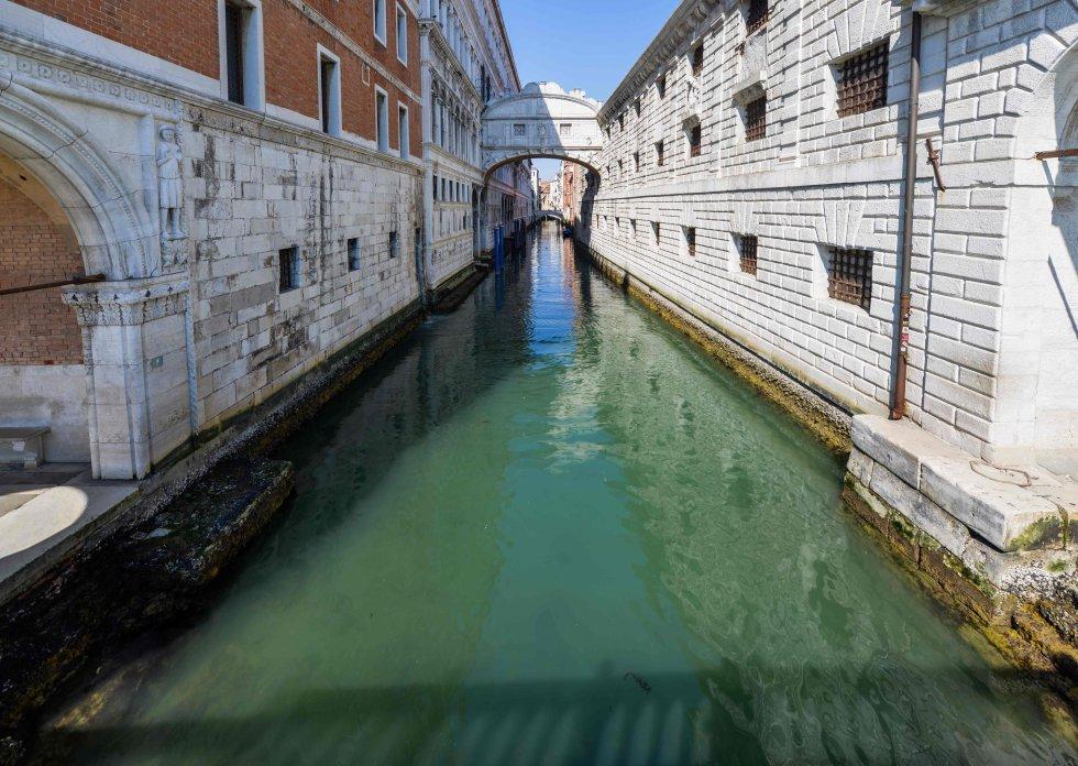 En Italia, Venecia presume sus canales cristalinos y con peces, disminuye el nivel de contaminación en varias partes del mundo